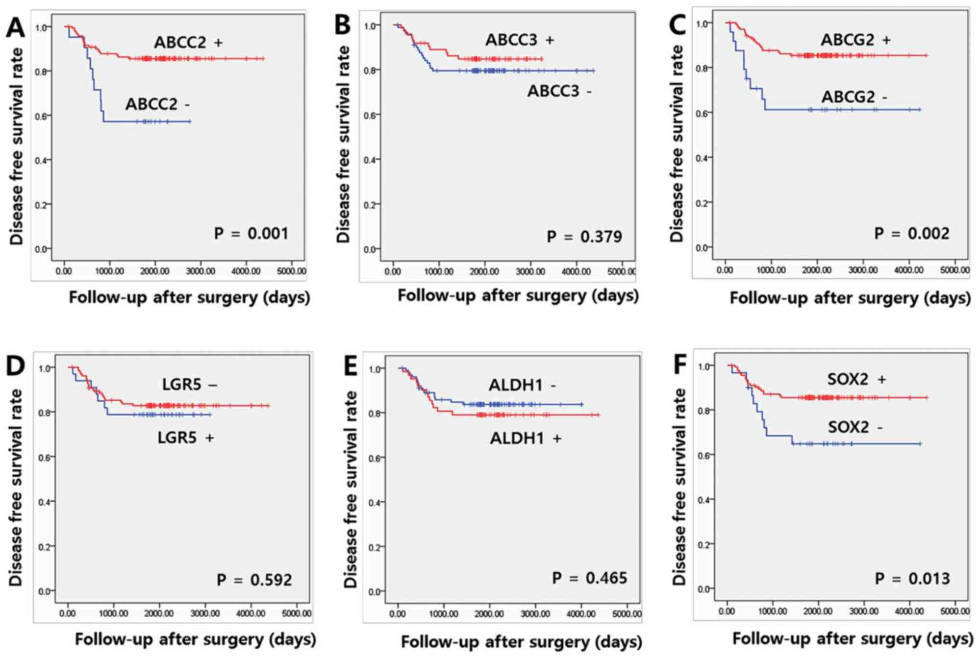 hight resolution of figure 3 association between disease free survival rate and expression of cancer stem cell markers and abc transporters kaplan meier disease free survival