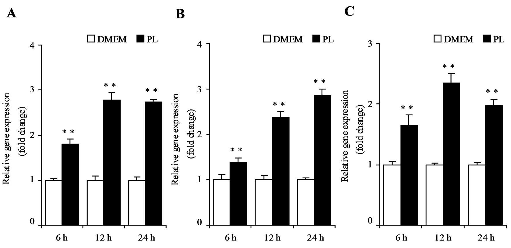 Vitamin B6 activates p53 and elevates p21 gene expression