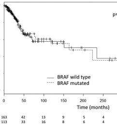 figure 2 overall survival of the 278 patients according to their braf status for 2 patients the date of primary melanoma was unknown explaining 2  [ 1205 x 840 Pixel ]