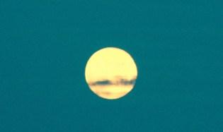 Early Moon Rising