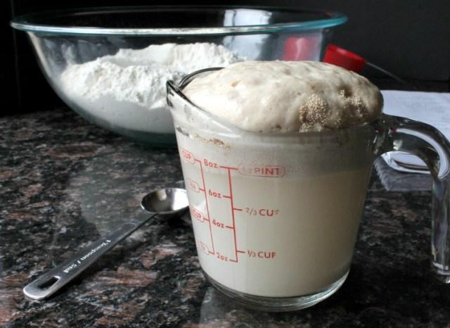Homemade Butter Rolls 2