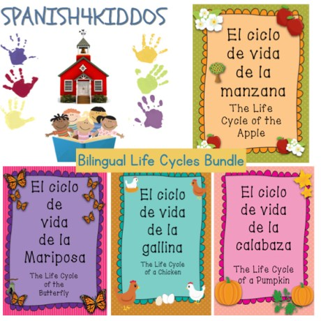 bilingual life cycles bundle