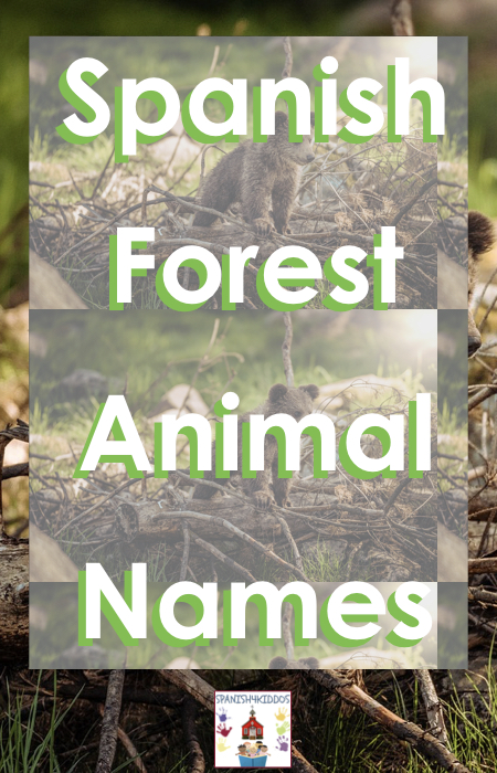 forest animal names