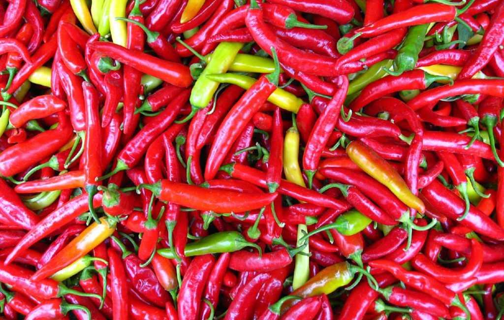 Waar komt de naam Spaanse peper vandaan
