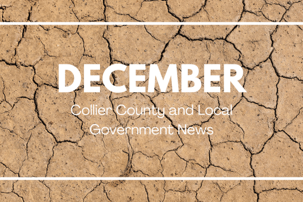December Collier Government News