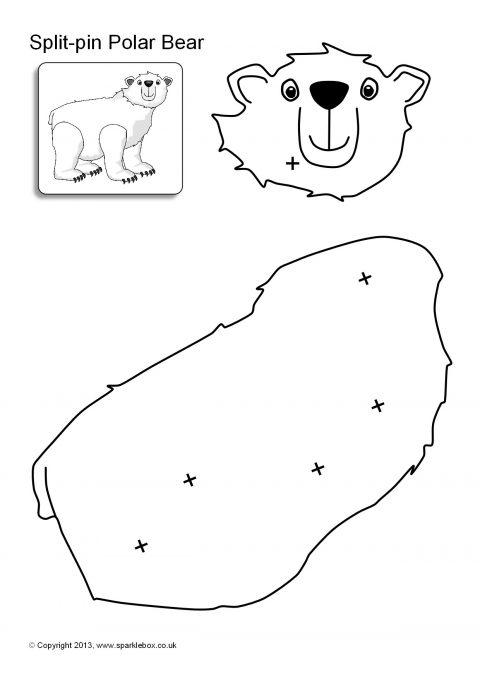 Split-Pin Polar Animals