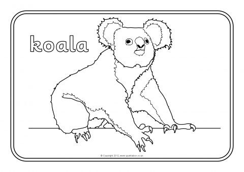 Australian Animals Printable Coloring Pages
