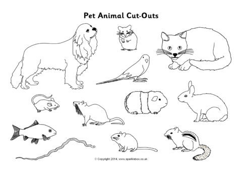 Pet Animal Cut-Outs