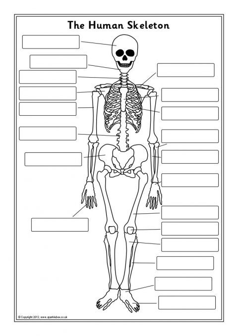 Related Items
