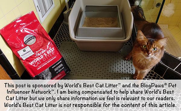 sponsored disclaimer for World's Best Cat Litter