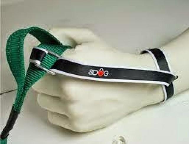 sdog2 SAFE DOG SDOG guinzaglio - la cintura di sicurezza per il nostro cane