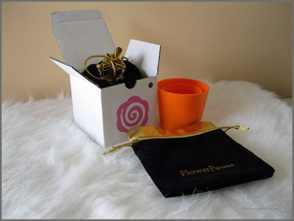 FlowerPower Vase Thanksgiving Place Card Holder and GIVEAWAY - Sparkles of Sunshine