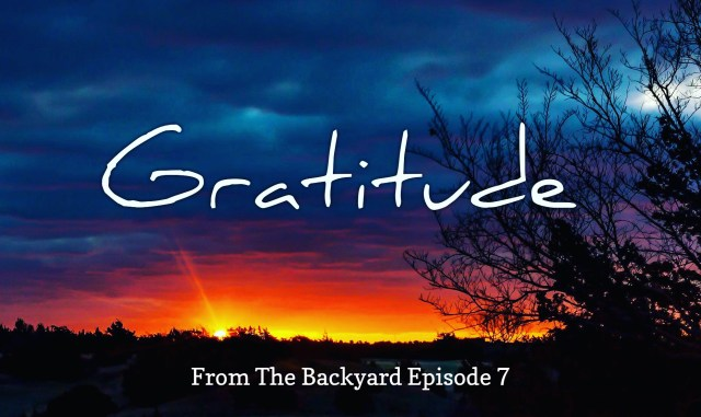 From The Backyard Video Episode 7 by Steven Shomler – Reflections on Gratitude