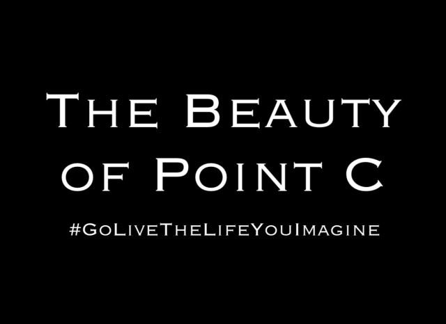 The Beauty of Point C by Steven Shomler