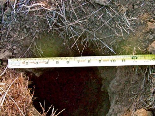 Size of Hole
