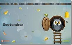 autumn_owl__7