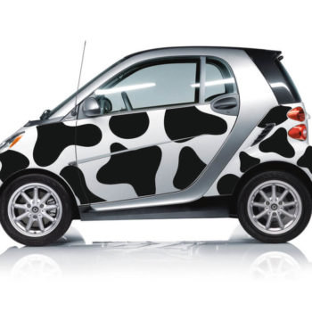 Adesivi per auto smart milk