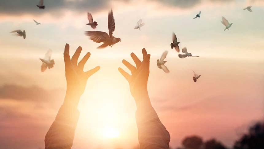 Liberazione Spirituale Trascendente