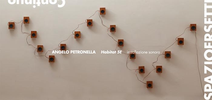 Angelo Petronella