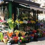 negozi-di-fiori