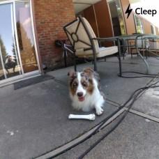 cleep_3