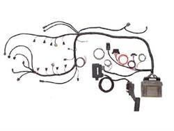 Speartech Ls Wiring Harness OEM Wiring Harness ~ Elsavadorla