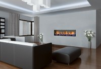 LOW PROFILE GAS FIREPLACE  Fireplaces