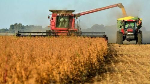 Una fase della 'cosecha' moderna in Argentina - sito infobase.com