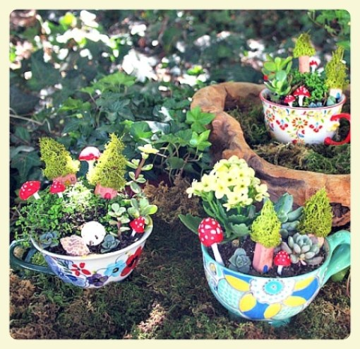 Mini gardens in teacups. Featured by LE CHEMIN ABA, learning house for children with autism, in Paris, France.