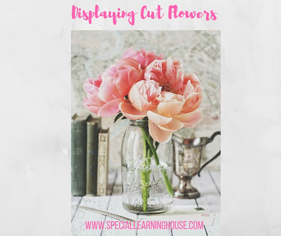 displaying cut flowers