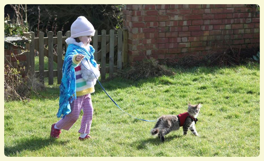 Iris Grace & Thula her therapy cat dressing-up. Featured by Special Learning House. www.speciallearninghouse.com