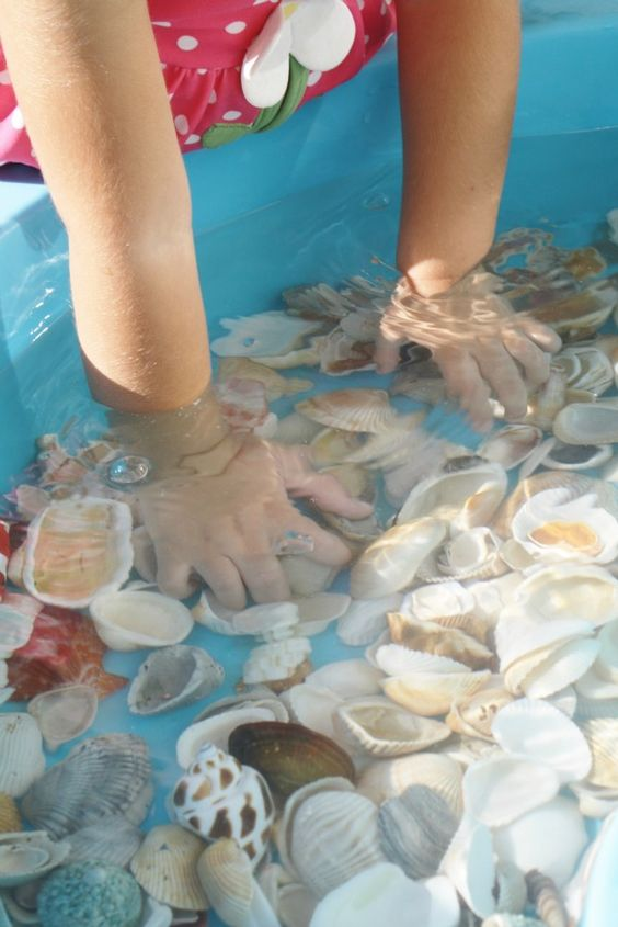 little girl with hands in a bin filled with water and seashells