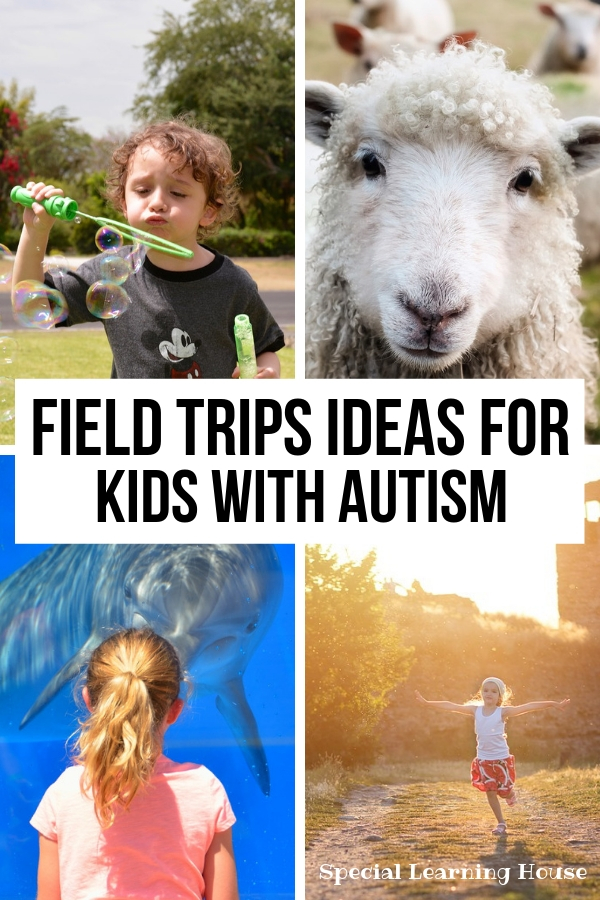 Field Trip Ideas for Children with Autism