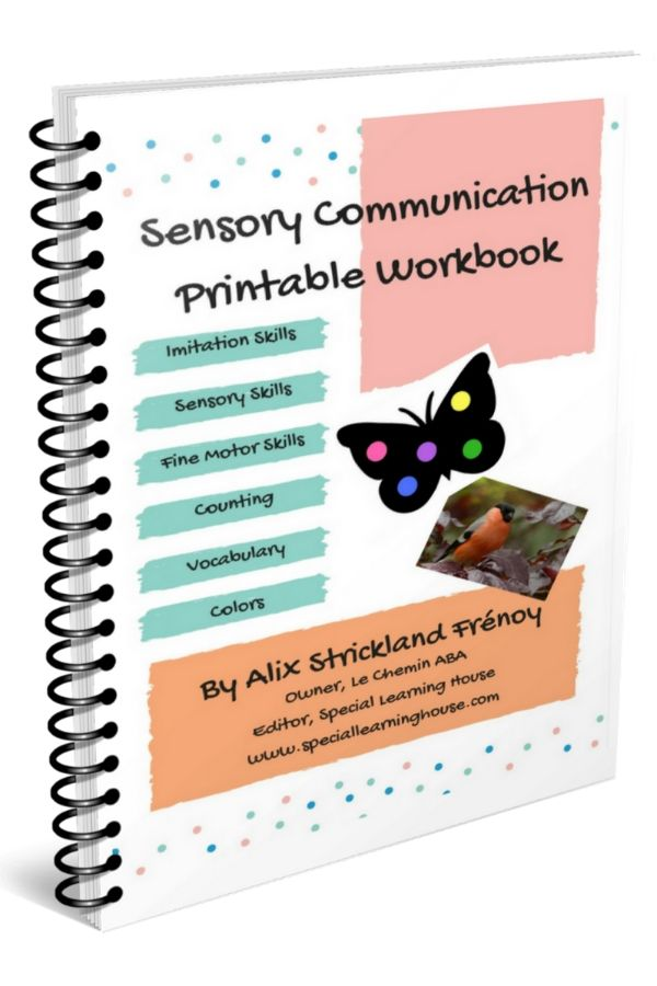 sensory communication workbook for kids with autism