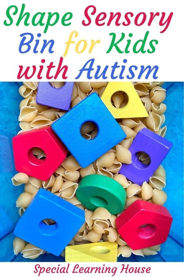 Shape Sensory Bin for Kids with Autism