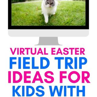 Virtual Easter Field Trips Ideas for Kids with Autism