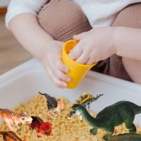 Dinosaur Sensory Bins for Kids with Autism