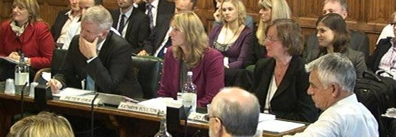SEN Reforms: professional views to the select committee
