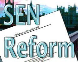 SEN reform progress report: 'pathfinder champions' chosen