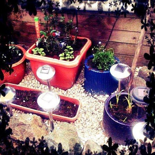 Angela's pots