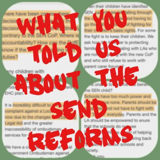 What YOU told us about the SEND reforms