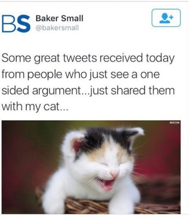 just shared them with my (laughing) cat