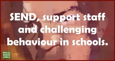 SEND, support staff and challenging behaviour in schools.