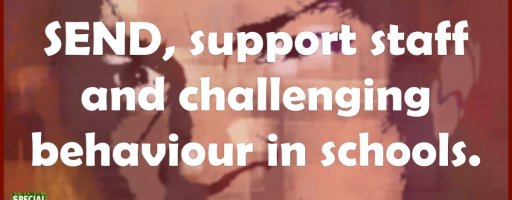 SEND, support staff and challenging behaviour in schools.