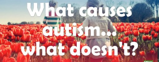 What causes autism… what doesn't?