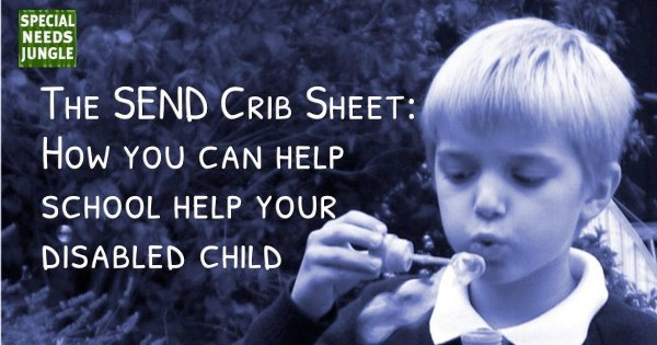 The SEND crib sheet: How you can help school help your disabled child