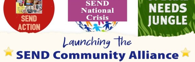Launching the SEND Community Alliance: An independent campaign group