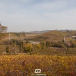 ©SpecialStages-MarcoMarangoni-LangheAutunno-0646
