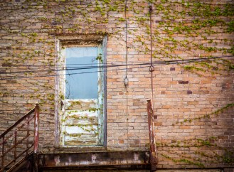 Old door with Ivy - St. Marys, PA