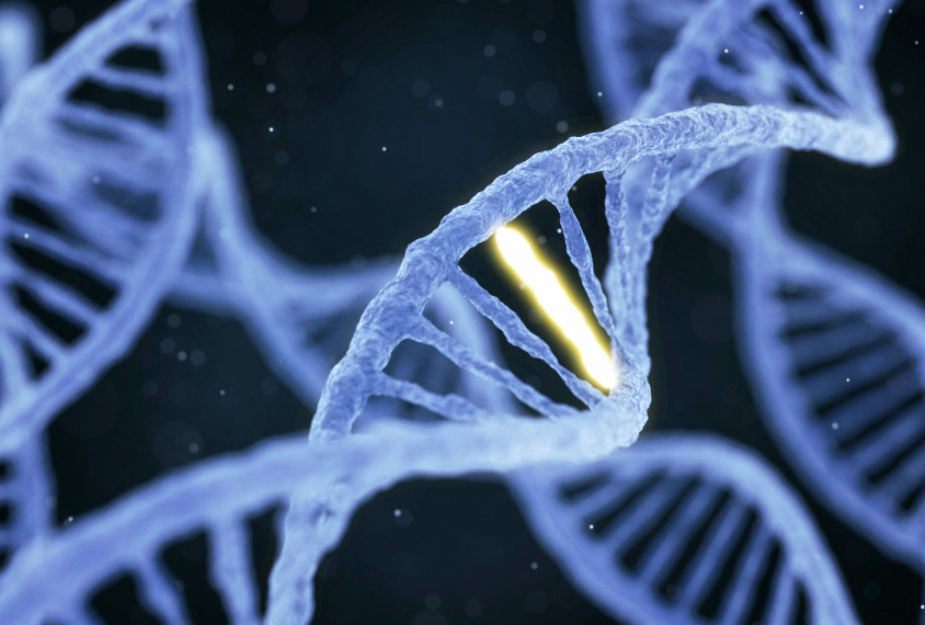 silent mutations may contribute